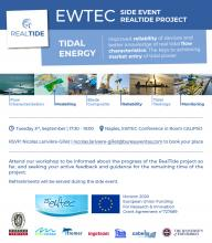 The RealTide EWTEC 2019 Workshop Flyer